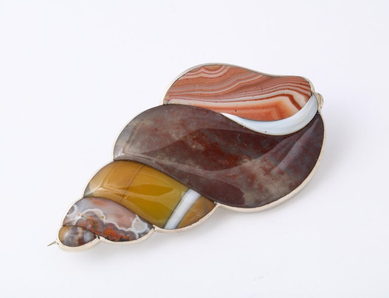 Antique Rare Victorian Scottish Agate Shell Brooch In Excellent Condition For Sale In Stamford, CT