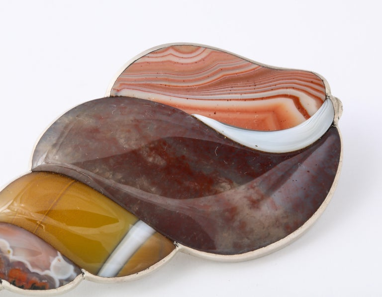 Women's or Men's Antique Rare Victorian Scottish Agate Shell Brooch For Sale