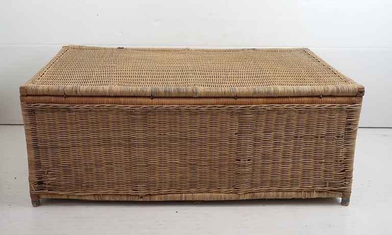 Campaign Antique Rattan Travelling Trunk, English 19th Century For Sale