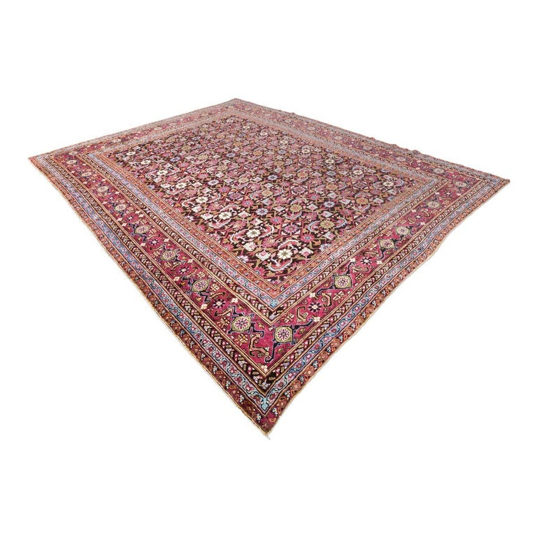 India Agra rug, a collector's item due to the rarity of the design and the colorful use. - Its large number of well-worked valances bring elegance to this rug. - The design consists of small green palmettes from which leaves and flowers in white