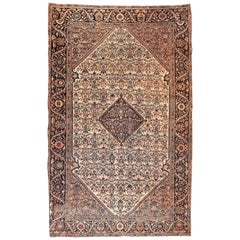 Antique Rug Persian Farahan Sarouk, Hand Knotted, circa 1900