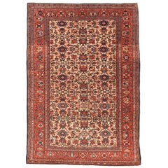 Antique Rug  Persian Farahan Sarouk , Hand Knotted , Circa 1890