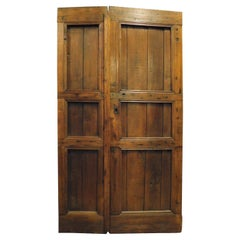 Antique Rustic Double-Wing Door, in Larch with Carved Panels, 19th Century Italy