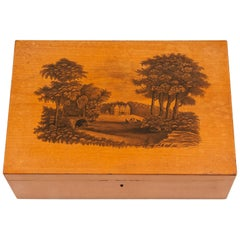 Antique Satinwood Sewing Box Stiven, 19th Century