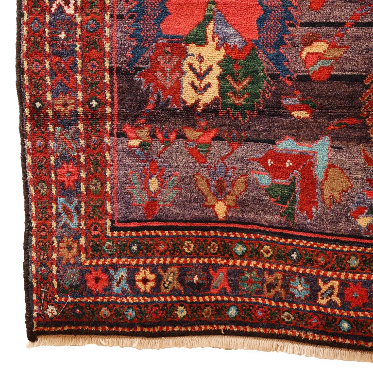 Antique Saveh Persian Carpet in Pure Wool and Vegetable Dyes, circa 1910 For Sale 5