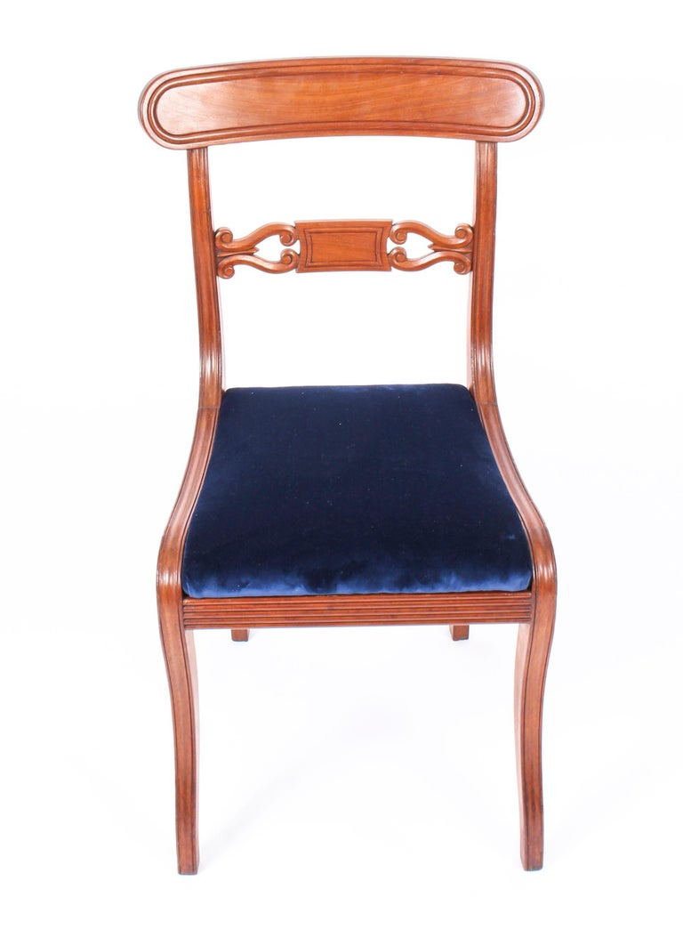 Antique Set of 14 Regency Mahogany Dining Chairs, 19th Century For Sale 5