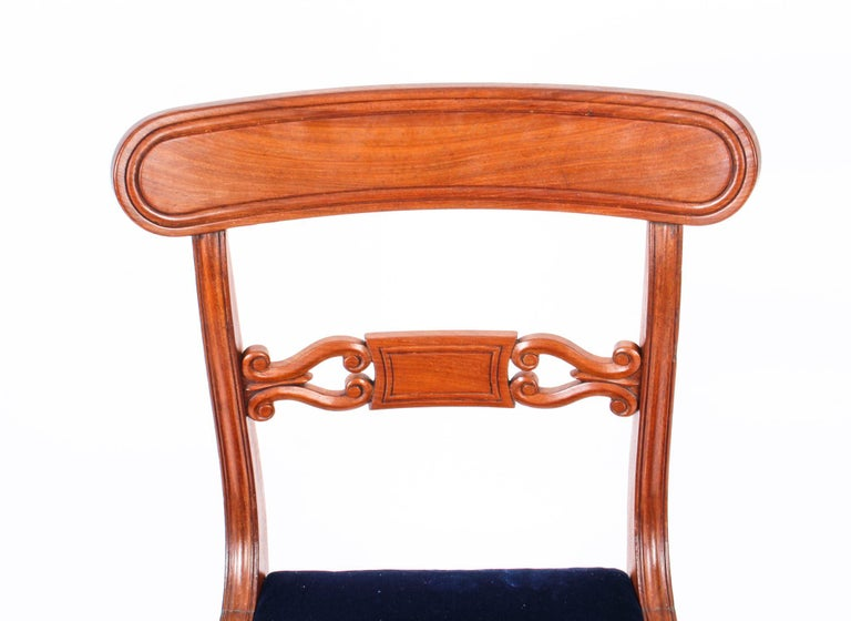 Antique Set of 14 Regency Mahogany Dining Chairs, 19th Century For Sale 7