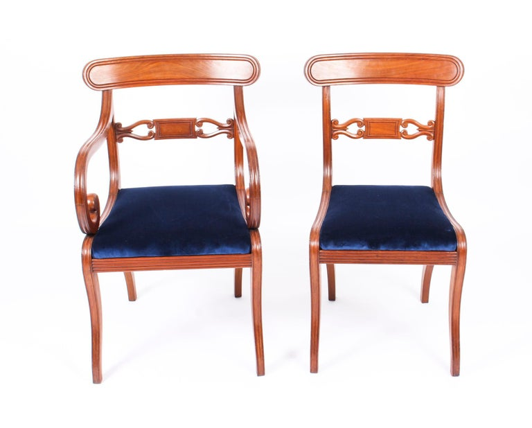 A stunning and rare long set of fourteen antique Regency Period mahogany dining chairs, circa 1820 in date.  The bar back chairs with curved top rails above scrolled horizontal splats. The overstuffed drop in seats above reeded seat rails, they are