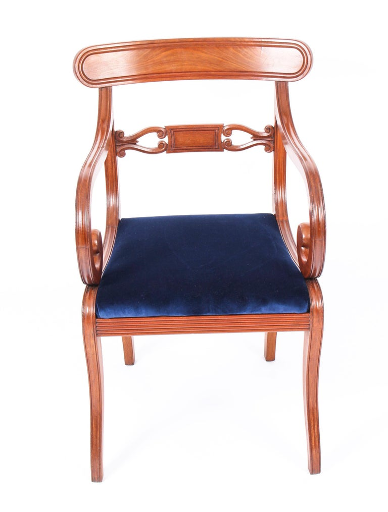 Antique Set of 14 Regency Mahogany Dining Chairs, 19th Century For Sale 2