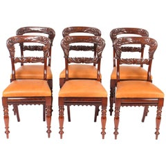 Antique Set of 6 William IV Mahogany Dining Chairs, 19th Century