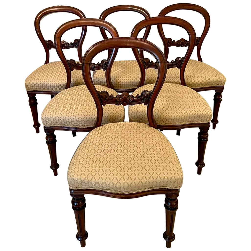 Antique Set of Six Victorian Mahogany Balloon Back Dining Chairs