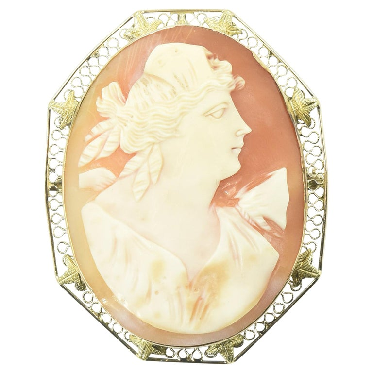 Antique Shell Cameo Portrait Gold Brooch Pendant For Sale
