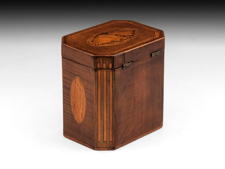 18th Century and Earlier Antique Shell Inlaid Harewood Tea Caddy, 18th Century For Sale