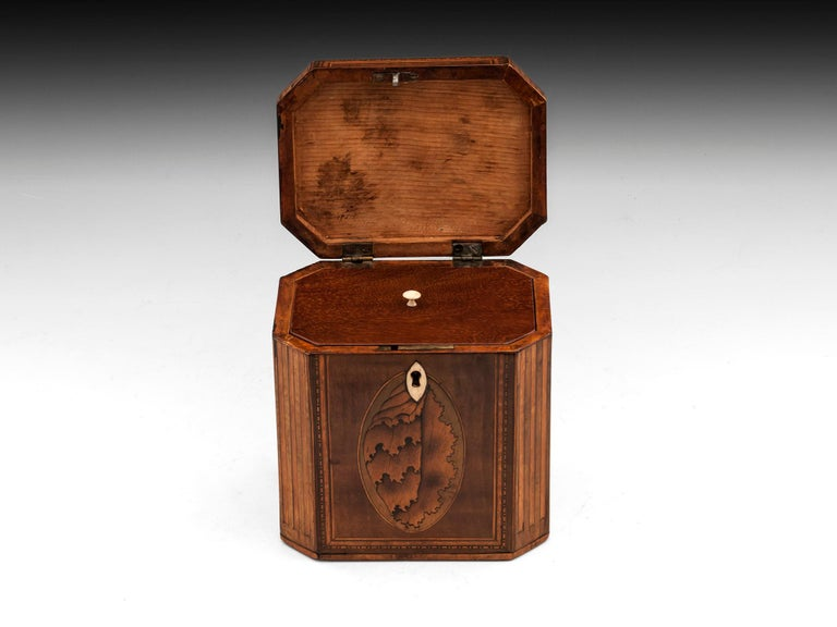 Bone Antique Shell Inlaid Harewood Tea Caddy, 18th Century For Sale