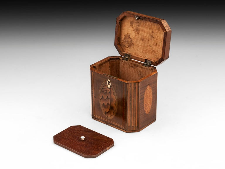 Antique Shell Inlaid Harewood Tea Caddy, 18th Century For Sale 1