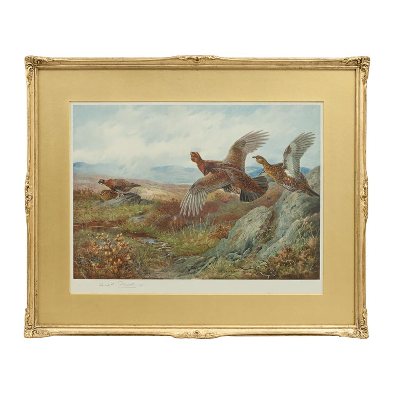 Antique Shooting Picture Game Birds by Archibald Thorburn 1927 For Sale