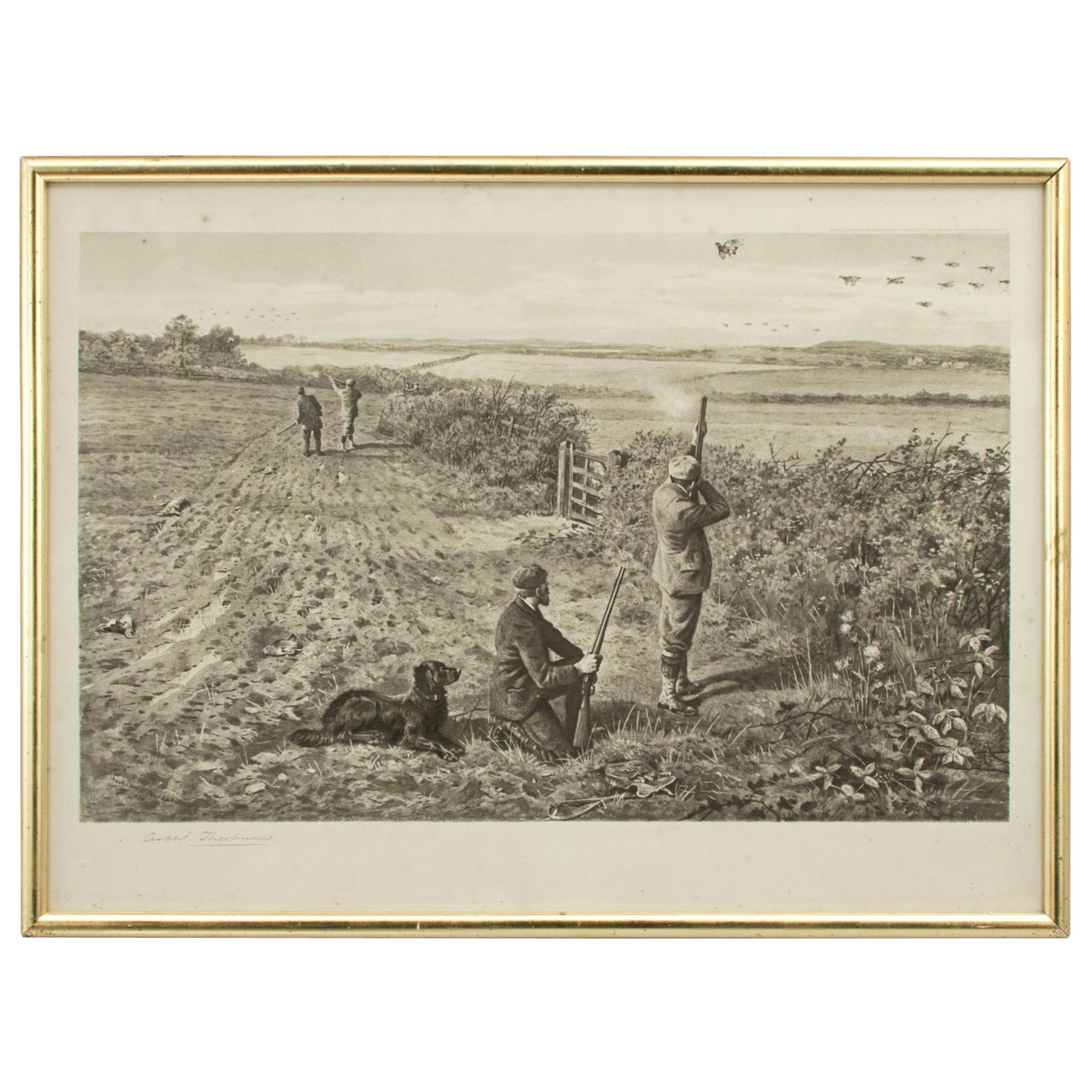 Antique Shooting Print by Archibald Thorburn