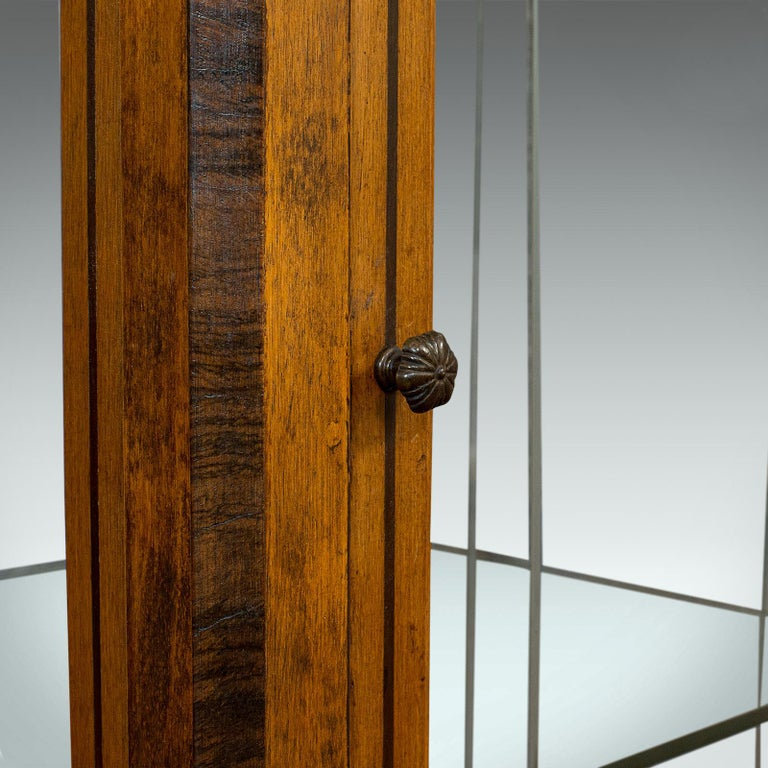 Antique Shop Display Cabinet, English, Oak, Walnut, Showcase, Edwardian For Sale 6