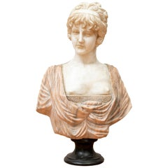 Antique Stone Bust in Rose/ White Marble of a Young Lady
