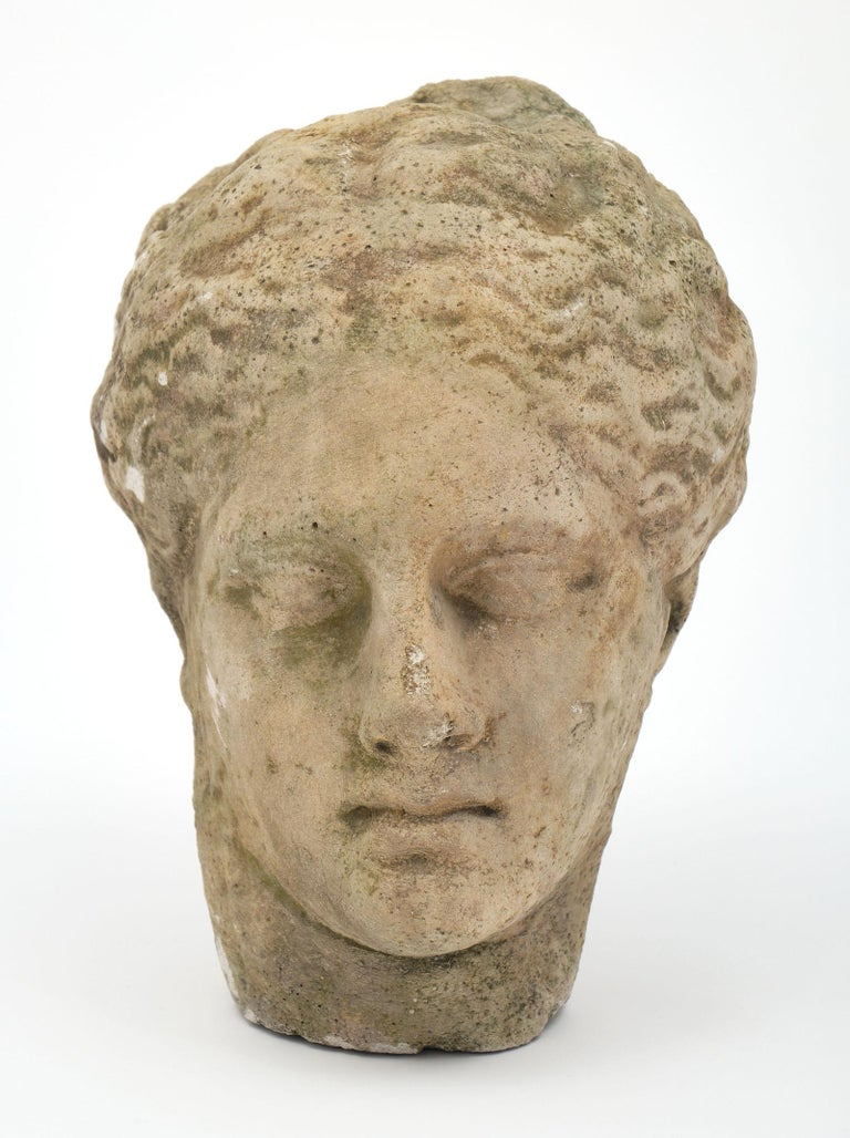 French Antique Stone Bust of Athena For Sale