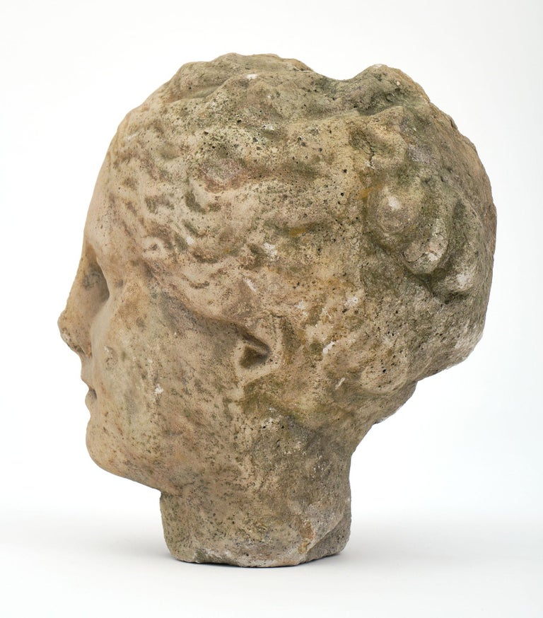 Antique Stone Bust of Athena For Sale 1
