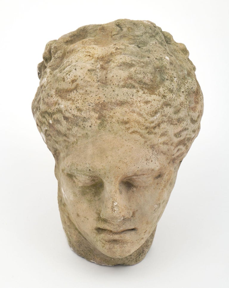 Antique Stone Bust of Athena For Sale 2