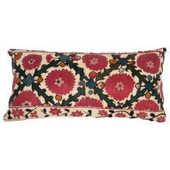 Antique Suzani Pillow Case Made from a 19th C. Ura Tube Suzani from Tajikistan,