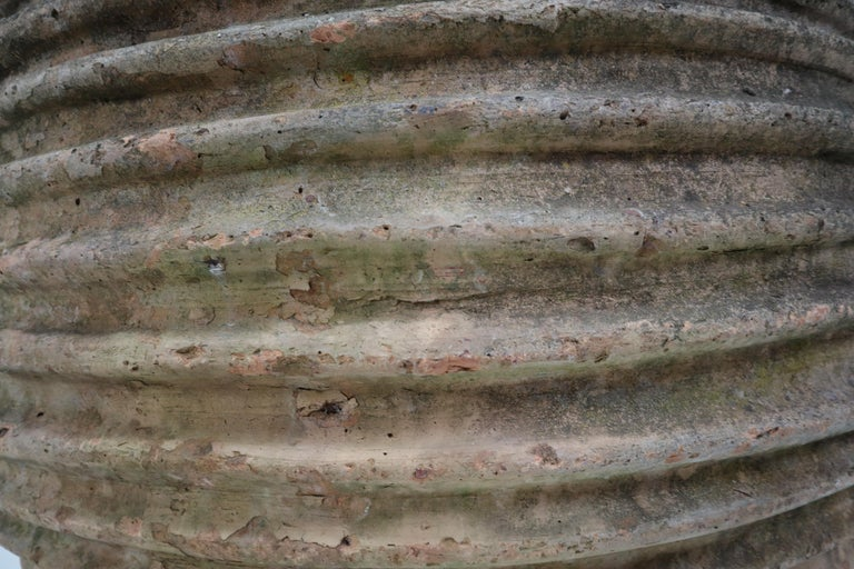 Giant Antique Terracotta Ribbed Olive Jar with Dark Lichen Patination In Good Condition For Sale In Almelo, NL