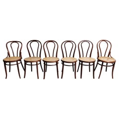 Antique Thonet Dining Chairs, Set of 6