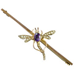 Antique Victorian Amethyst Pearl Dragonfly 9 Carat Gold Boxed Brooch, circa 1900