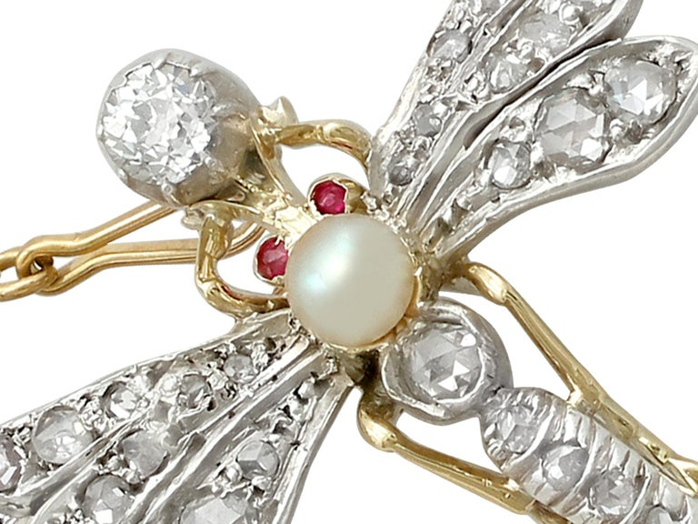 An impressive 1.30 carat diamond and pearl, 0.02 carat ruby and 9 karat yellow gold, silver set 'dragonfly' brooch; part of our diverse antique jewelry collections  This fine and impressive antique brooch has been crafted in 9k yellow gold with a