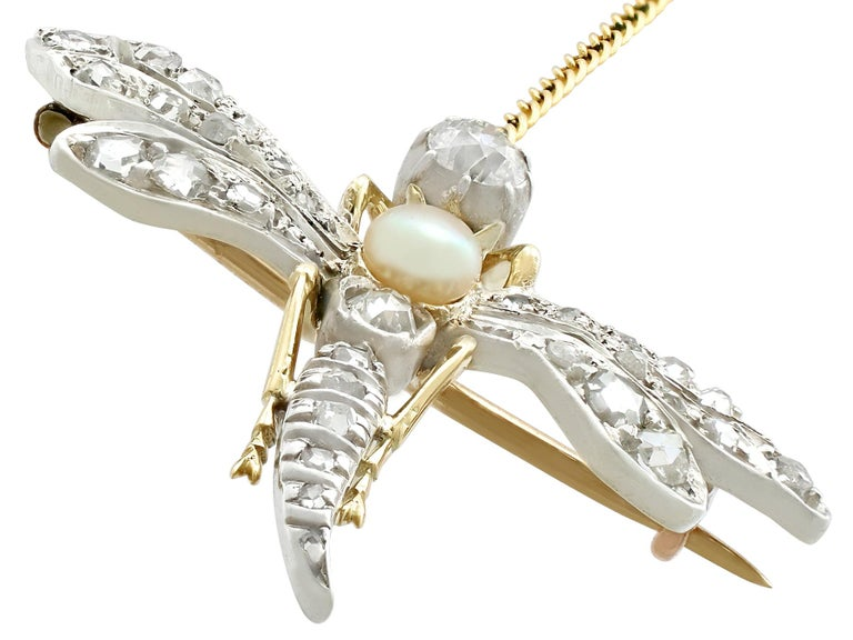 Women's Antique Victorian Diamond Pearl Ruby and Yellow Gold 'Dragonfly' Brooch For Sale