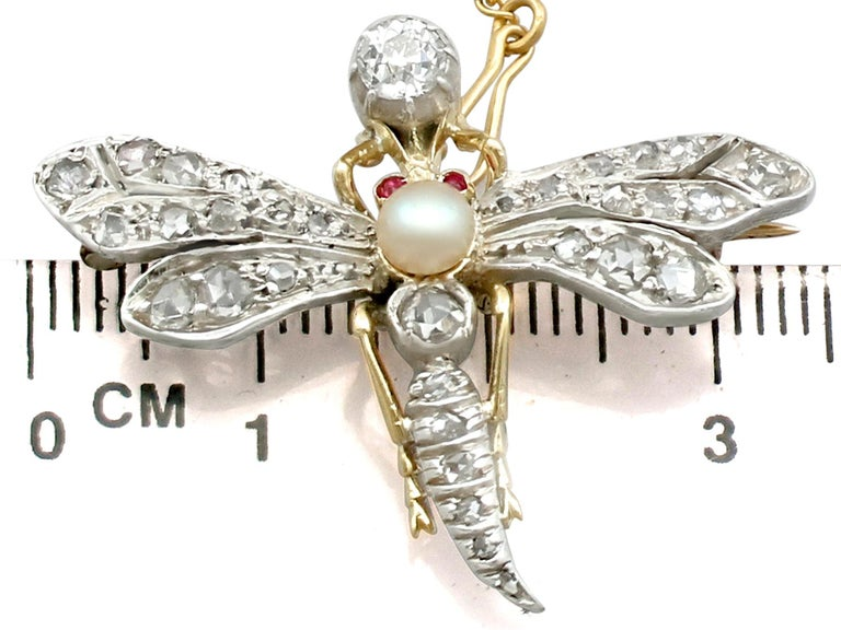 Antique Victorian Diamond Pearl Ruby and Yellow Gold 'Dragonfly' Brooch For Sale 1
