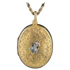 Antique Victorian Locket Diamond Insect 18 Carat Gold Chain Necklace