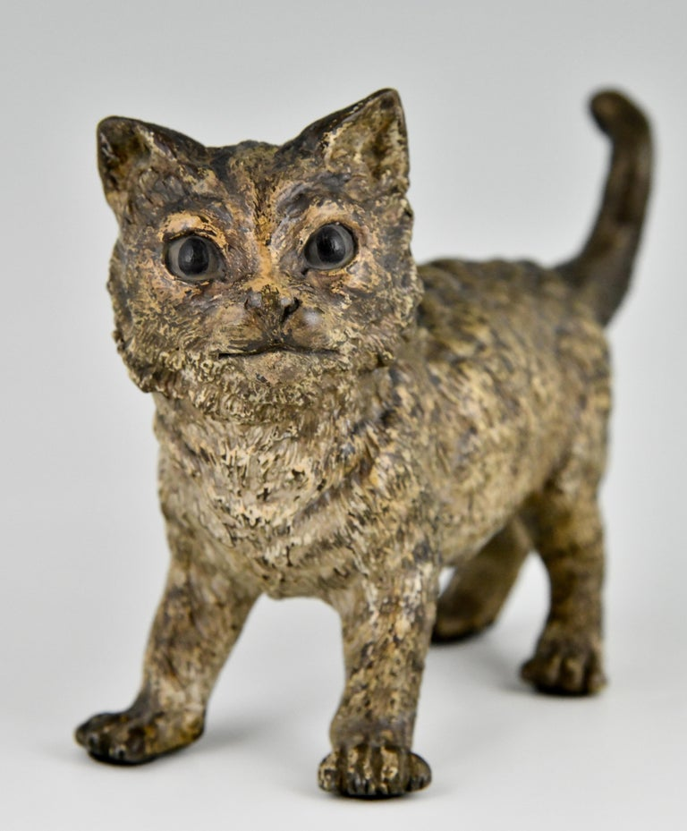 Antique Vienna Bronze Sculpture of a Cat by Bergman, Austria, ca. 1900 For Sale 3