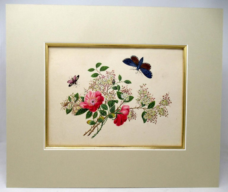 Victorian Antique Vintage Pair of English Watercolor Paintings Still Life of Flowers Gilt For Sale
