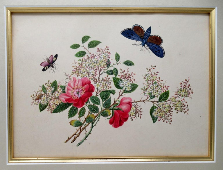 19th Century Antique Vintage Pair of English Watercolor Paintings Still Life of Flowers Gilt For Sale