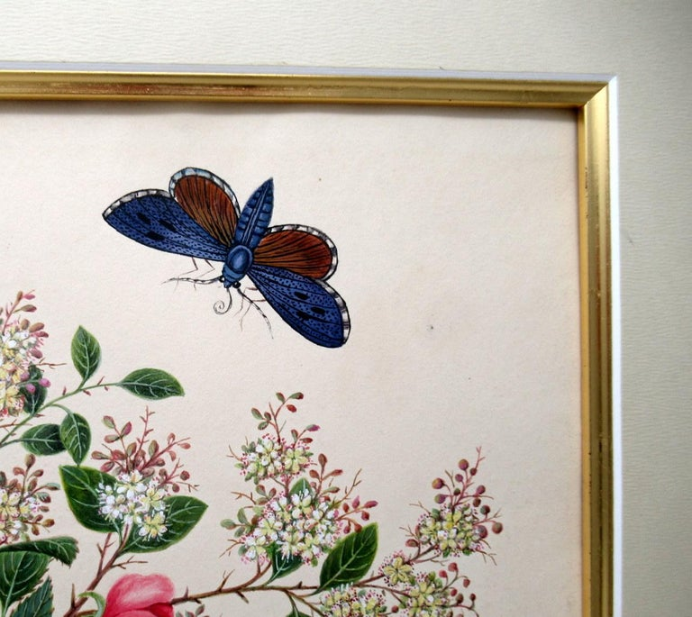 Paper Antique Vintage Pair of English Watercolor Paintings Still Life of Flowers Gilt For Sale