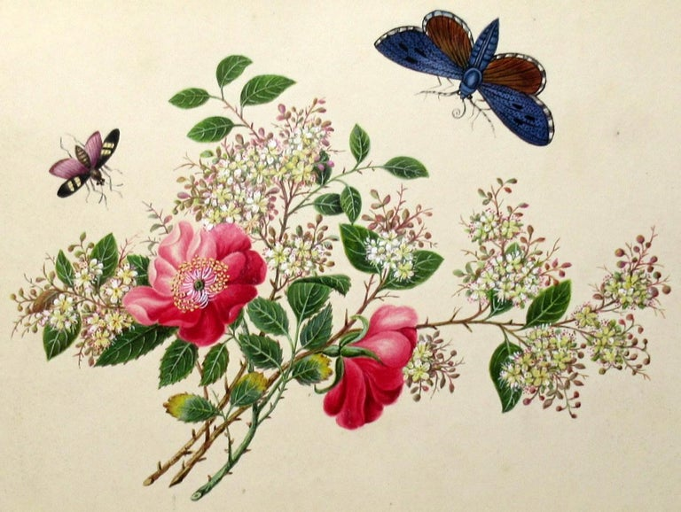 Antique Vintage Pair of English Watercolor Paintings Still Life of Flowers Gilt For Sale 1