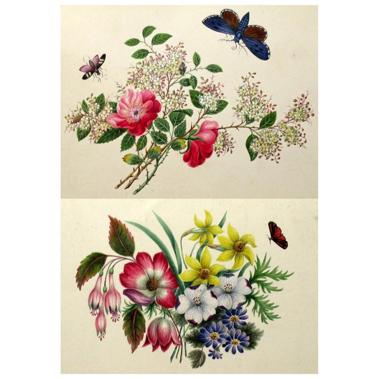 Antique Vintage Pair of English Watercolor Paintings Still Life of Flowers Gilt For Sale