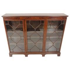 Antique Walnut Bookcase, Edwardian Display Cabinet, Scotland 1920, B1930