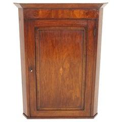Antique Walnut Cabinet, Georgian Hanging Corner Cabinet, Scotland 1810, B1816