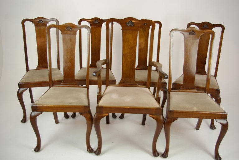 Antique Walnut Chairs, Queen Anne Chairs, 7 Dining Chairs, Scotland 1920, B1196 For Sale 8