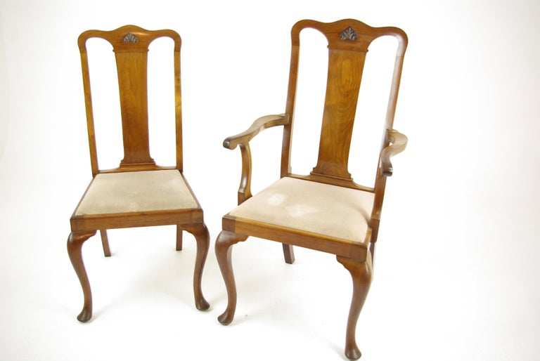 Early 20th Century Antique Walnut Chairs, Queen Anne Chairs, 7 Dining Chairs, Scotland 1920, B1196 For Sale
