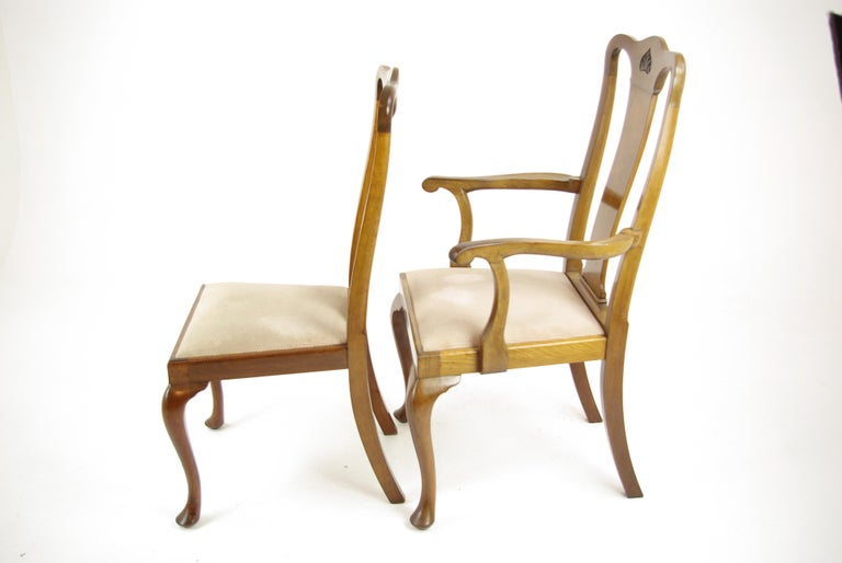 Antique Walnut Chairs, Queen Anne Chairs, 7 Dining Chairs, Scotland 1920, B1196 For Sale 1