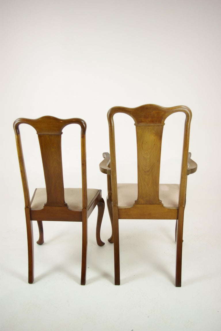 Antique Walnut Chairs, Queen Anne Chairs, 7 Dining Chairs, Scotland 1920, B1196 For Sale 2