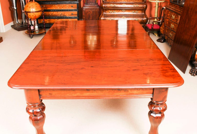 Antique William IV Mahogany Dining Table and 10 Chairs, 19th Century 4