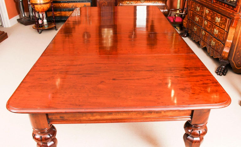 Antique William IV Mahogany Dining Table and 10 Chairs, 19th Century 5