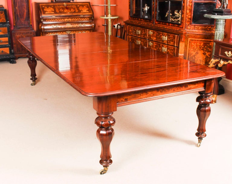 English Antique William IV Mahogany Dining Table and 10 Chairs, 19th Century