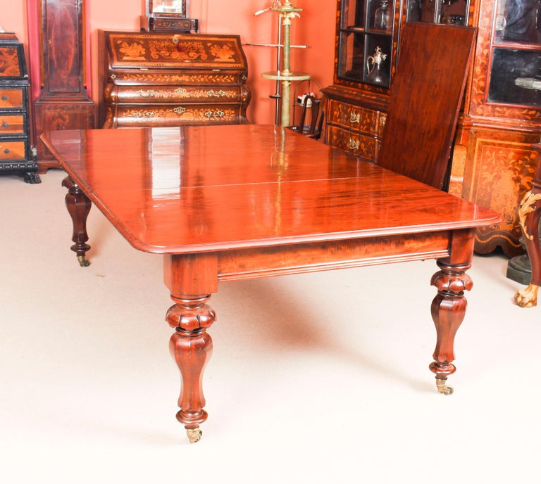 Mid-19th Century Antique William IV Mahogany Dining Table and 10 Chairs, 19th Century